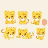 Leopard set. Royalty Free Stock Photo