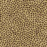 Leopard skin. An large illustration of spotted leopard or jaguar skin or fur Stock Photo