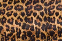 Free Leopard Skin Stock Photo - 40079070