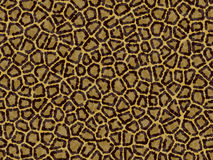 Leopard skin. Texture stock photography
