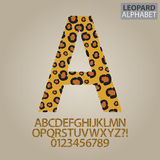 Leopard Skin Alphabet and Numbers Vector Stock Photography