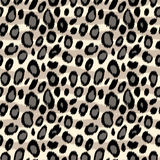 Leopard skin animal print seamless pattern in black and white, vector Stock Images