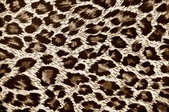 Leopard skin background vector illustration