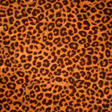 Leopard skin background or texture Royalty Free Stock Images