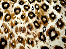 Leopard Skin Design Royalty Free Stock Image