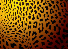 Leopard skin gold Stock Photography