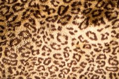 Leopard Skin. Photo of an abstract texture stock photos