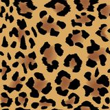 Leopard skin pattern Stock Photo