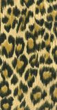 Leopard skin pattern I Stock Photography