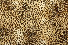Leopard skin pattern texture. Leopard texture background. Animal print. Leopard fur texture. royalty free stock images