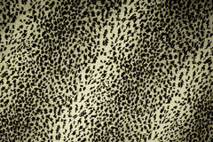 Leopard skin pattern texture Royalty Free Stock Photo