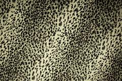 Leopard skin pattern texture Royalty Free Stock Photo