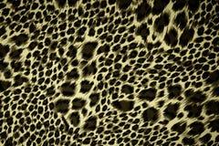 Leopard skin pattern texture Stock Photos