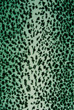 Leopard skin pattern texture Stock Images