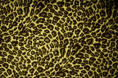 Leopard skin pattern texture Royalty Free Stock Photography