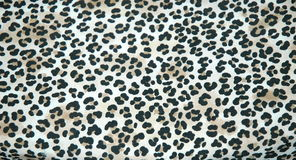 Leopard skin rug. In a luxury home royalty free stock images