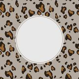 Leopard skin seamless pattern on gray background. Animal print. vector illustration