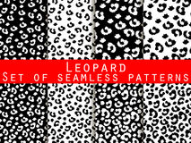 Leopard skin seamless pattern. Monochrome color. Stock Images