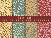 Leopard skin seamless pattern. Set leopard print. Vector Stock Photo
