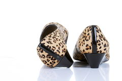 Leopard skin shoes Stock Image
