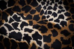 Leopard skin texture for background. Abstract background, empty template stock photography