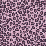 Leopard  skin texture seamless patern Stock Photos