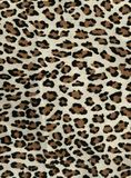 Leopard spots and dots stock photos