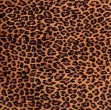 Leopard Spots Fabric Pattern. Close-up of a fabric with leopard spots pattern Royalty Free Stock Images