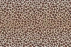 Leopard spots fur imitation, horizontal texture. Vector Royalty Free Stock Photography