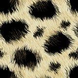 Leopard spots fur in a seamless pattern Stock Image