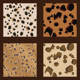 Leopard Spots Pattern-Wild - Illustration Stock Image