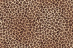 Leopard spotted fur texture. Vector. Leopard spotted beige brown fur texture. Vector illustration Royalty Free Stock Images