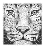 Leopard-Stich-Illustration Lizenzfreies Stockbild