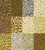 Leopard texture of  brown background Stock Image