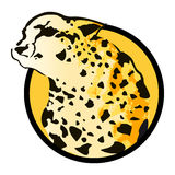 Leopard Vector badge - icon - emblem Royalty Free Stock Photo
