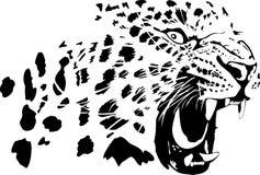 Leopard royalty free illustration