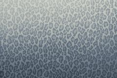 Leopard wild animal pattern background or texture, wallpaper concept blue grey filter royalty free stock photo