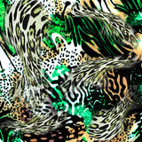 Leopard and zebra background Royalty Free Stock Photography