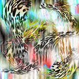 Leopard and zebra background Stock Photos