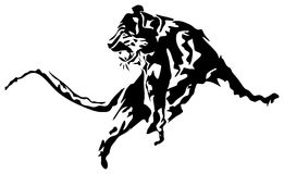 Leopardabstract Zdjęcie Stock