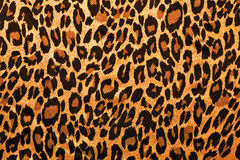 Leopardbildpäls som bakgrund Royaltyfri Foto