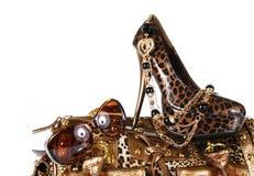 Leoparddruckzubehör: Handtasche, Schuh, sunglass stockbild