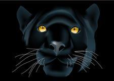 Leopardengesicht lizenzfreie abbildung