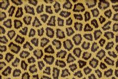 Leopardhautbeschaffenheit Stockbild