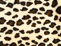 Leopardhintergrund Lizenzfreie Stockfotografie