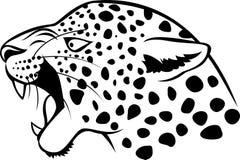 Leopardhuvudtatuering Fotografering för Bildbyråer