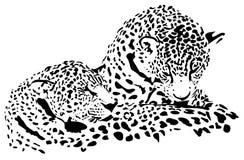 Leopardillustration Royaltyfria Bilder