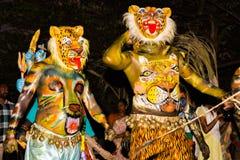 Leopardkarnevalskostüme stockfoto