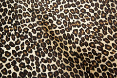 Leopardmodell Royaltyfria Bilder