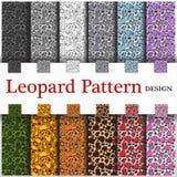 Leopardmodell Fotografering för Bildbyråer